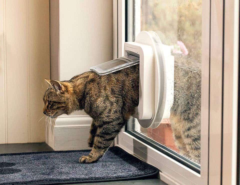 meilleure chatière électronique