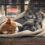 Comment se débarrasser des parasites chez le chat?